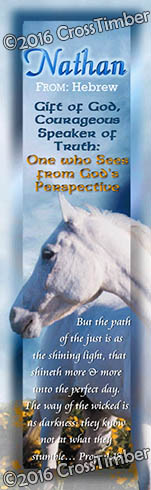 BM-AN26, Name Meaning Bookmark, Personalized with Bible Verse or Famous Quote, Nathan white horse