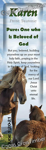BM-AN44, Name Meaning Bookmark, Personalized with Bible Verse or Famous Quote, karen horses mother mom child