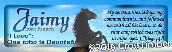 Horizontal Personalized Bookmark, The Mighty Black Horse