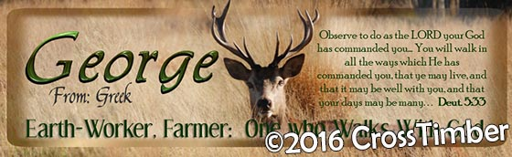 Horizontal Personalized Bookmark, Stag in the Field